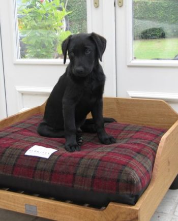 Berkeley Tartan Fabric Luxury Dog Bed Covers