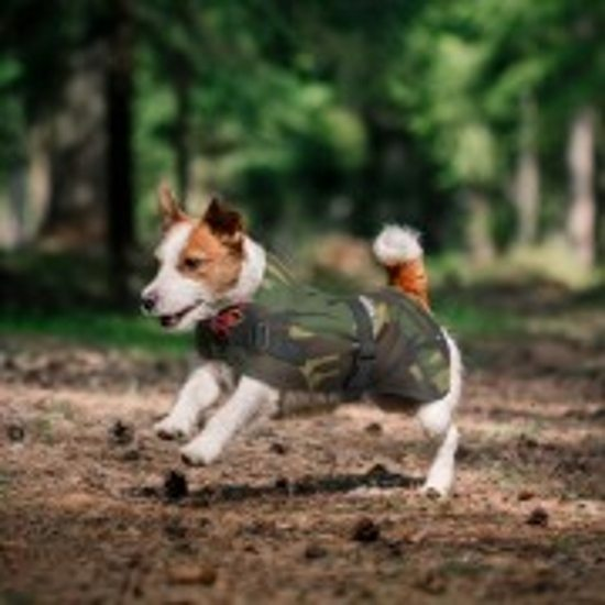 Petlife Flecta Hi-Vis Dog Coat