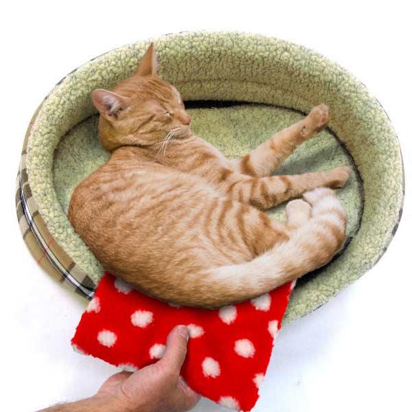 Petlife Hotties heat pad for pets-