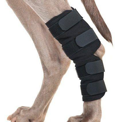 Therapeutic Dog Hock Wraps