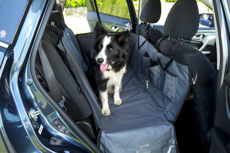 Car-Seat-Hammock